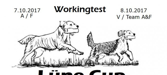 Meldestart Spaniel-Retriever Teamworkingtest